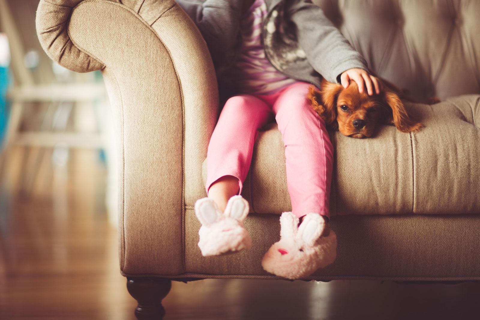 Vprašalnik za bodoče skrbnike psov